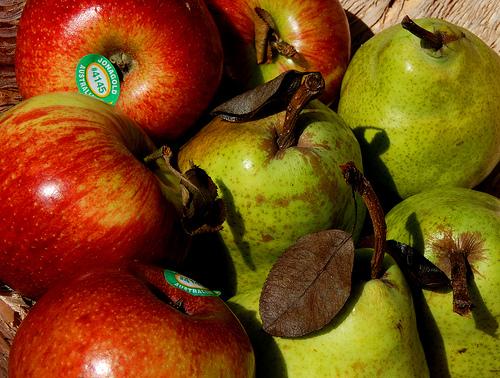 Les 10 principes de base pour maigrir en mangeant mieux